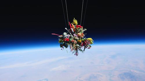 Τι γίνεται αν αφήσεις ελεύθερα στο διάστημα ορισμένα μπουκέτα με λουλούδια;